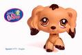 Littlest Pet Shop Cocker Spaniel #575 RARE!
