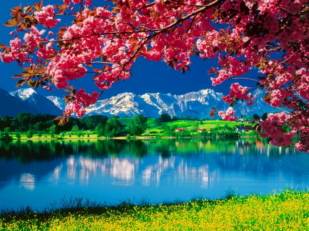 Wallpaper Nature Pictures Daydreaming Nature Wallpaper