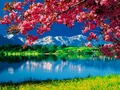 Nature Wallpaper - daydreaming wallpaper