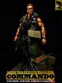 One sixth custom Arnold figure