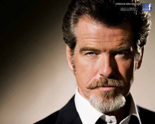 Pierce Brosnan वॉलपेपर with a business suit, a suit, and a dress suit called PIERCE BROSNAN WITTY