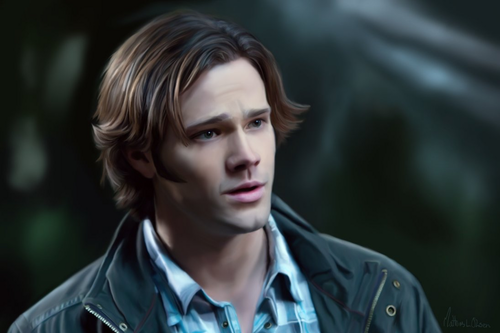 Sam Winchester wallpaper with a portrait titled Sam Winchester