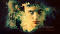 Sansa Stark - sansa-stark wallpaper