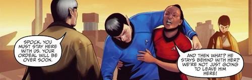 ster Trek ongoing #22