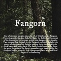Fangorn - jrr-tolkien fan art
