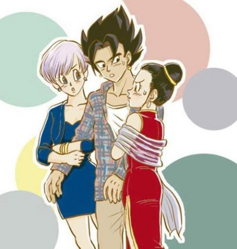 Vegeth between Bulma and chichi