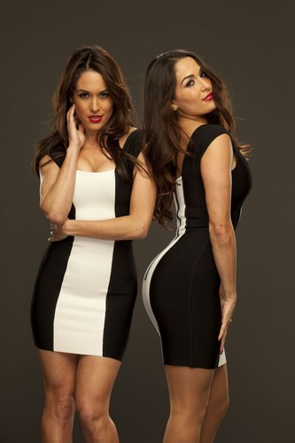 WWE2K Cover Art Contest: Bella Twins
