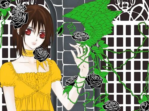 Yuuki hình nền