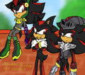 Zhadow,Shadow, and Lancelot - shadow-the-hedgehog photo