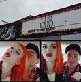 hayley - chad - hayley-williams photo