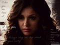 katherine, the one and only  - katherine-pierce photo