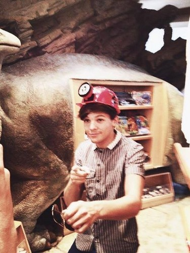 Louis Tomlinson wallpaper with a triceratops entitled louis tomlinson<3