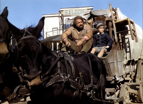 Bud Spencer karatasi la kupamba ukuta with a horse trail, a horse wrangler, and a saddle horse titled picha