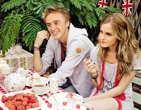 Tom Felton wallpaper probably containing a bouquet, a dinner, and an antipasto called tom