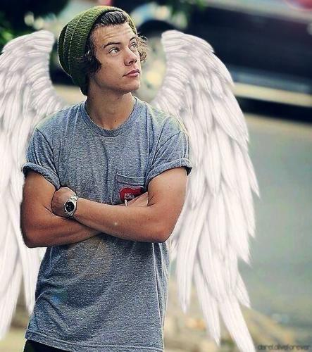 ☆ Harry ☆