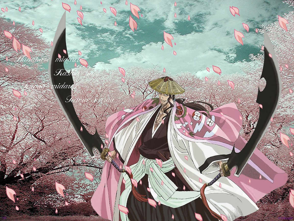 *Shunsui Kyoraku* - Bleach Anime Wallpaper (34984674) - Fanpop