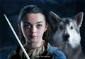 Arya & Bran Stark + direwolves - house-stark fan art