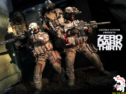films achtergrond with a rifleman, a green beret, and a navy zeehond, seal entitled Calvin's Custom one sixth scale ZERO DARK THIRTY diorama