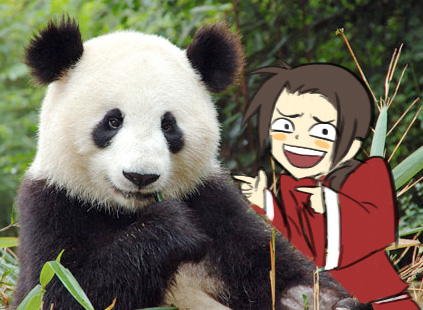 China meets giant panda!^^
