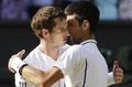 Djokovic Wimbledon 2013 - novak-djokovic photo