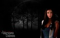 the-vampire-diaries - Elena Gilbert wallpaper