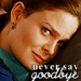 Emily as Temperance Brennan - emily-deschanel icon