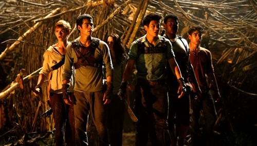 First Look: The Maze Runner Stills