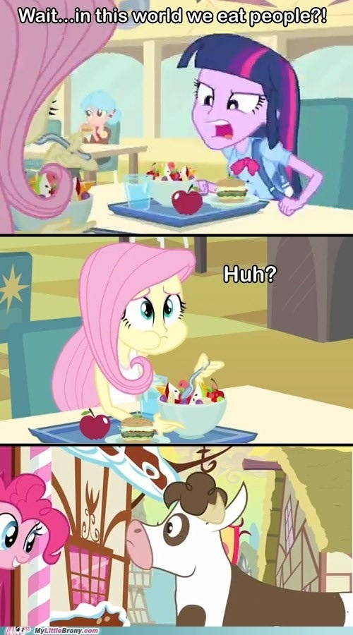 About Equestria Girls / my little pony / funny pictures