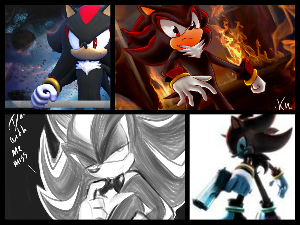 shadow the hedgehog love quizzes