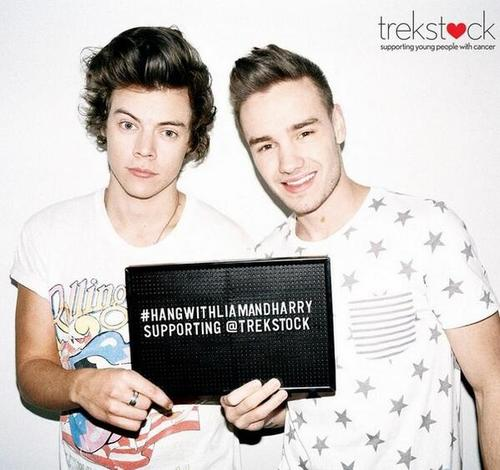 Liam and Harry - Trekstock
