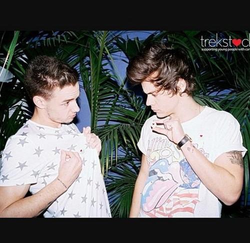 Liam and Harry - Trekstock
