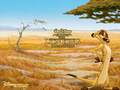 disney - Lion King Wallpaper wallpaper