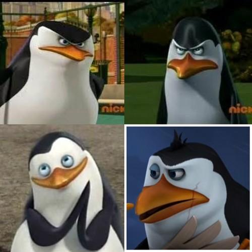 Penguins unite!:D