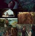 Prince Caspian. - the-chronicles-of-narnia fan art