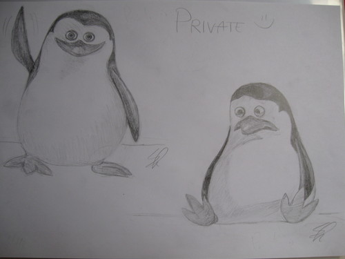Private Drawings