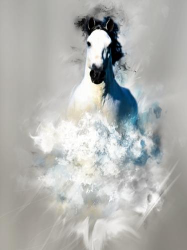 Stunning White Horse