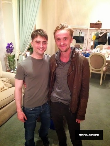 "Tom Felton wallpaper titled Tom Felton visits Daniel Radcliffe at ""The Cripple of Inishmaan"" performance"