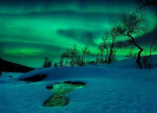 beauté des aurores boréales