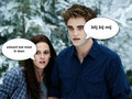 edward en bella - edward-cullen fan art