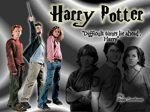 Harry Potter wallpaper probably with long trousers, a pantleg, and a well dressed person titled hp