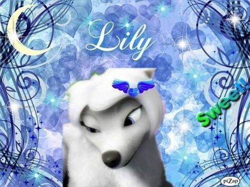lily!!!!!!