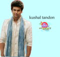true fans of kushal - ek-hazaaron-mein-meri-behna-hai photo