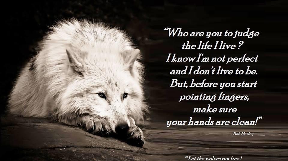 lobo poems