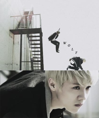 ♥ EXO - chó sói, sói Drama Version ♥