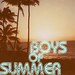 Boys of Summer - Don Henley - music icon