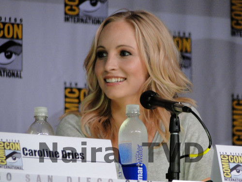 Candice Accola wallpaper entitled Candice at Comic Con 2013 - The Vampire Diaries Panel