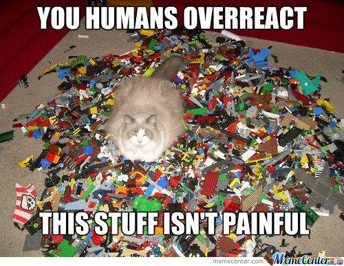 Cat on lego