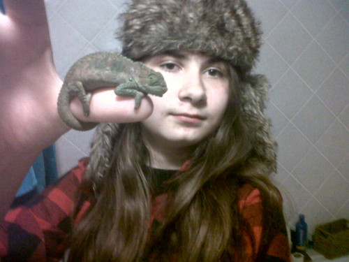 Chugotta luv chameleons!