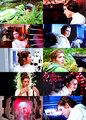 Collage Jedi - princess-leia-organa-solo-skywalker fan art