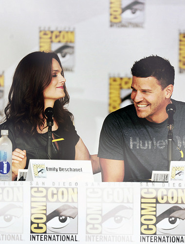 David Boreanaz and Emily Deschanel at Comic Con 2013